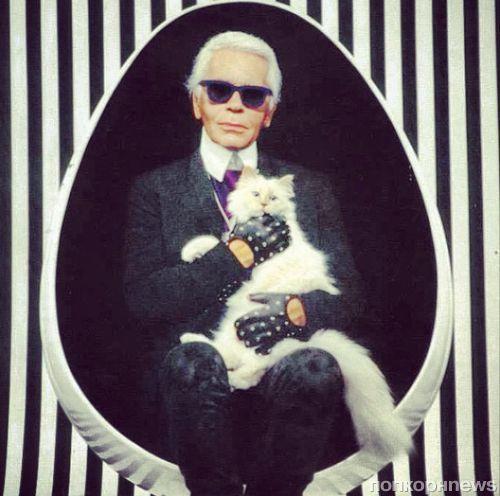 Кошка Карла Лагерфельда зарабатывает больше, чем Кара Делевинь