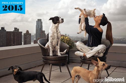 Ариана Гранде призывает помогать бездомным животным