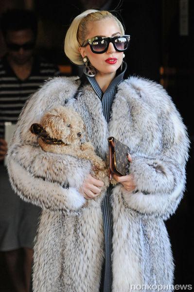 Lady Gaga ответила на нападки PETA