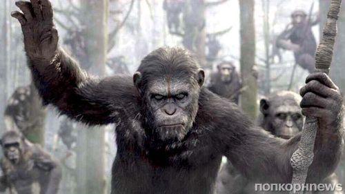 "Второй трейлер фильма ""Планета обезьян: Революция"""