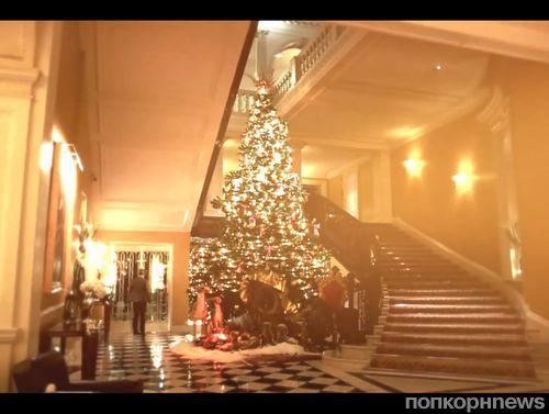 Видео: рождественская елка для Claridge's от Dolce & Gabbana