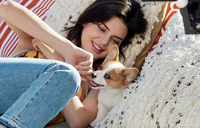 Кендалл Дженнер (и собачки) в рекламной кампании Tod's весна-лето 2018
