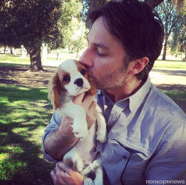 Звезды в социальных сетях: у Лорд день рождения, а у Эшли Грин собака