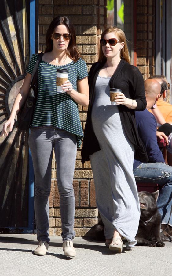 Подружки Эми Адамс и Эмили Блант на прогулке