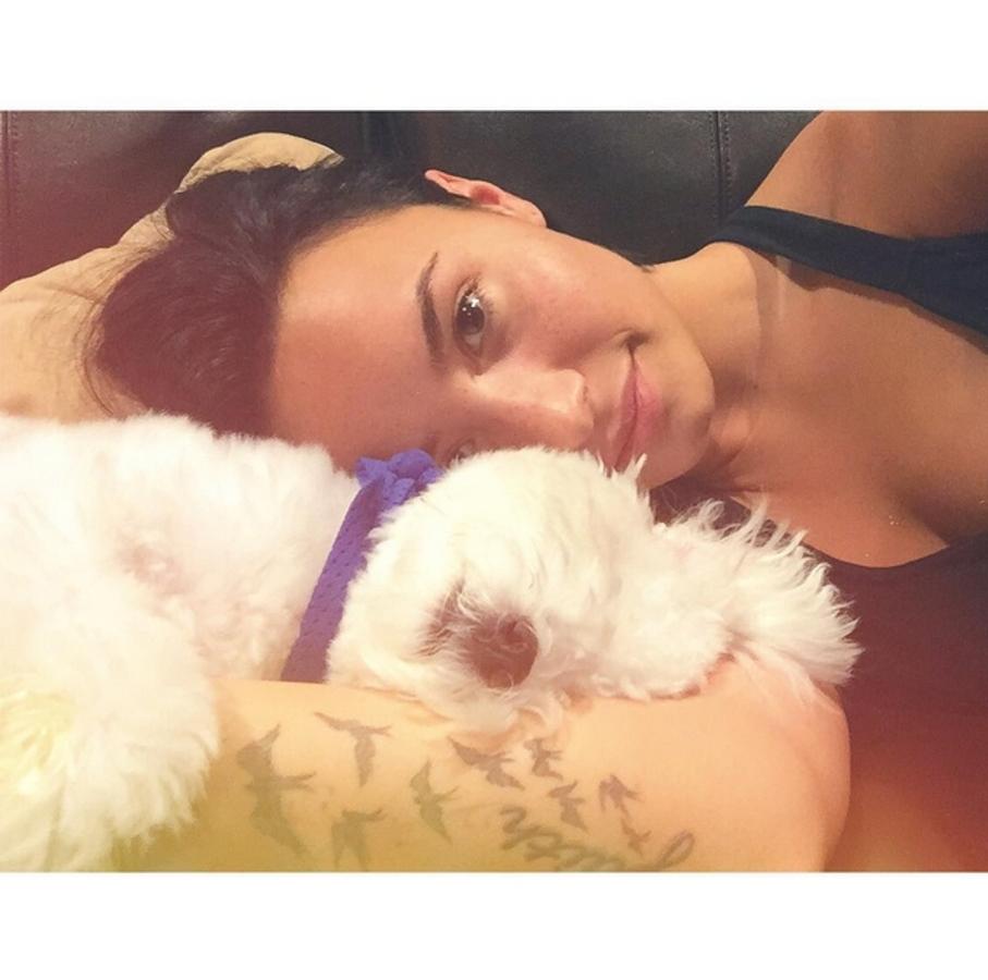 Деми Ловато лишилась любимой собаки