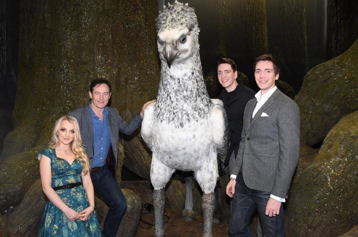 Звезды «Гарри Поттера» посетили «запретный лес» студии Warner Bros
