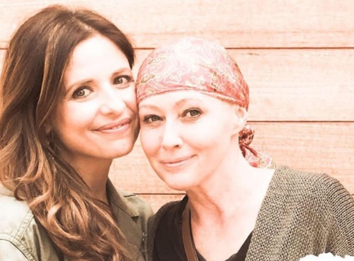 Сара Мишель Геллар поддержала больную раком Шэннен Доэрти