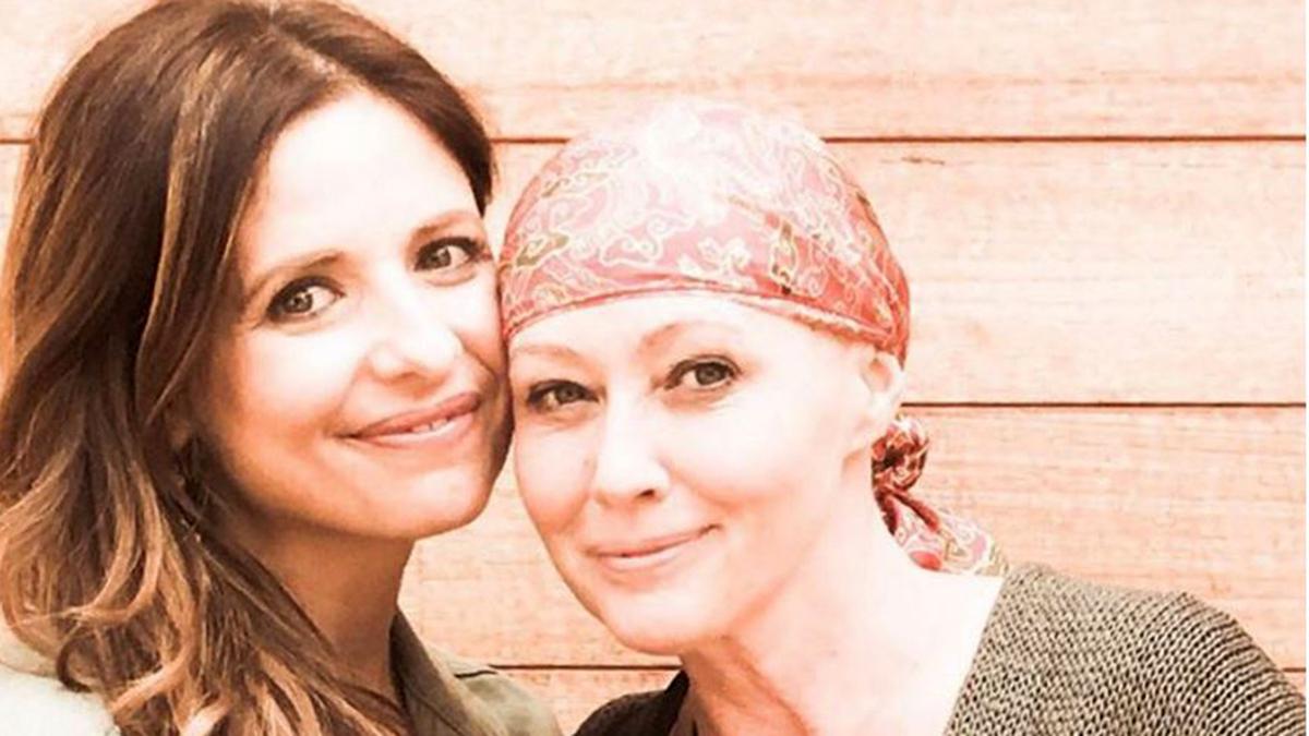 Сара Мишель Геллар о Шэннен Доэрти и ее борьбе с раком: «Вот что такое настоящее мужество»