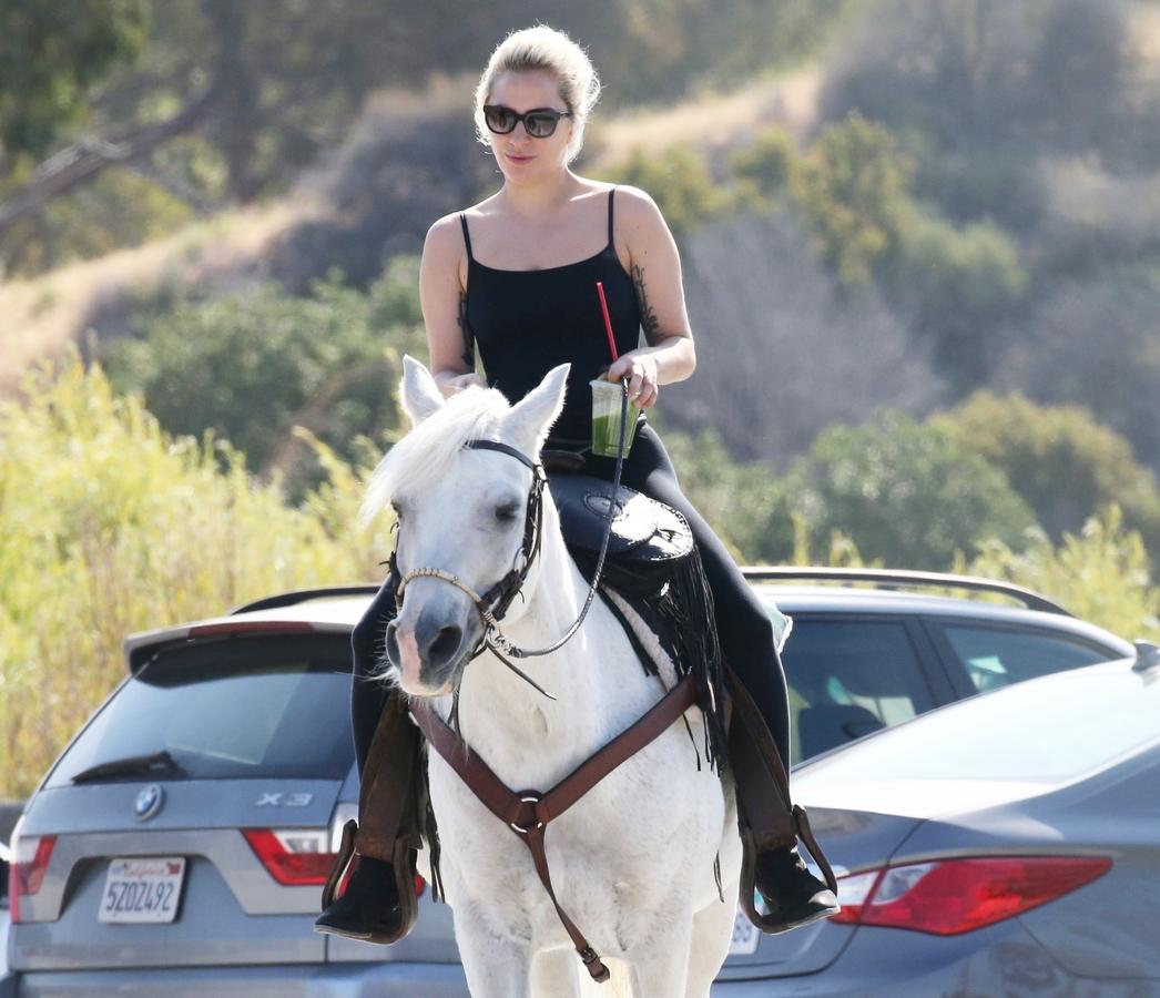 Леди Гага поддержала Хилари Клинтон патриотичным фото