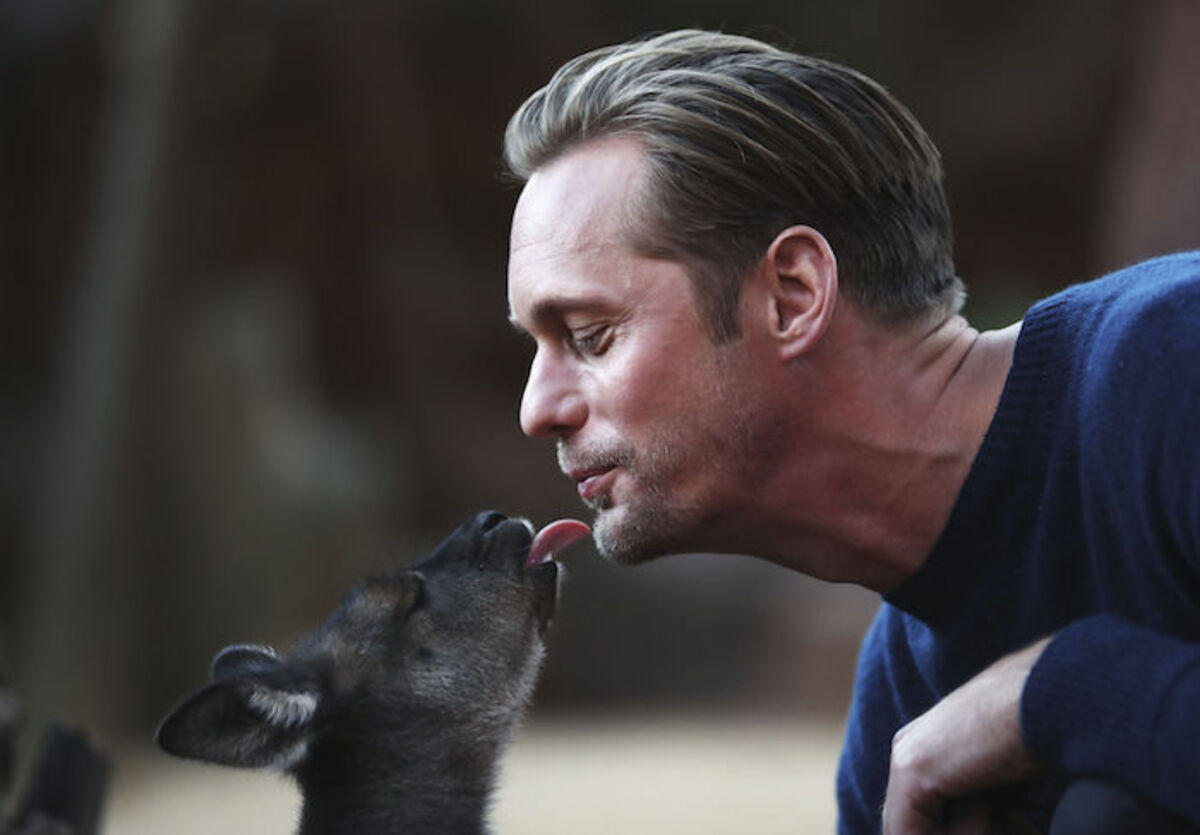 Александр Скарсгард навестил маленьких кенгурят на фотоколле «Тарзан: Легенда»