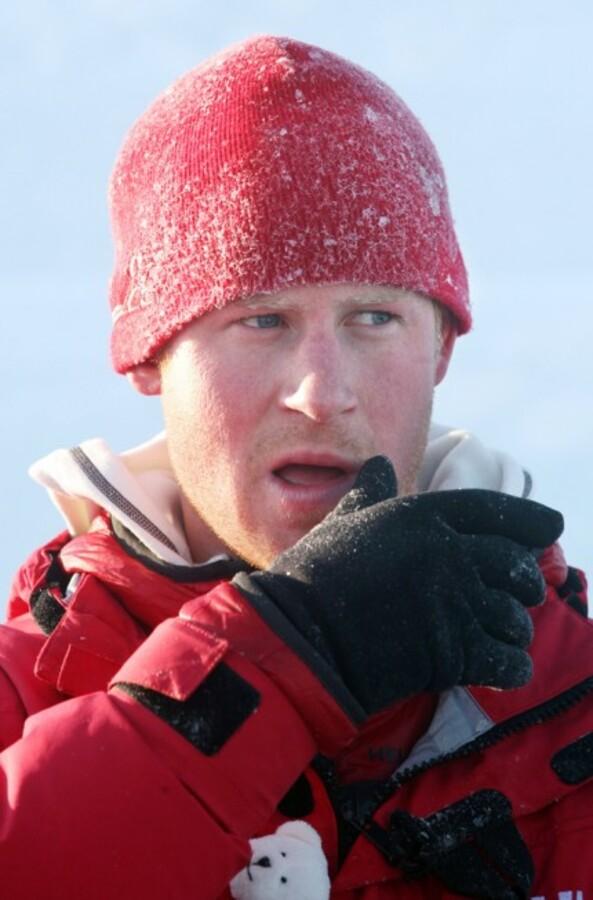 Принц Гарри чуть не лишился своих ушей на Северном полюсе