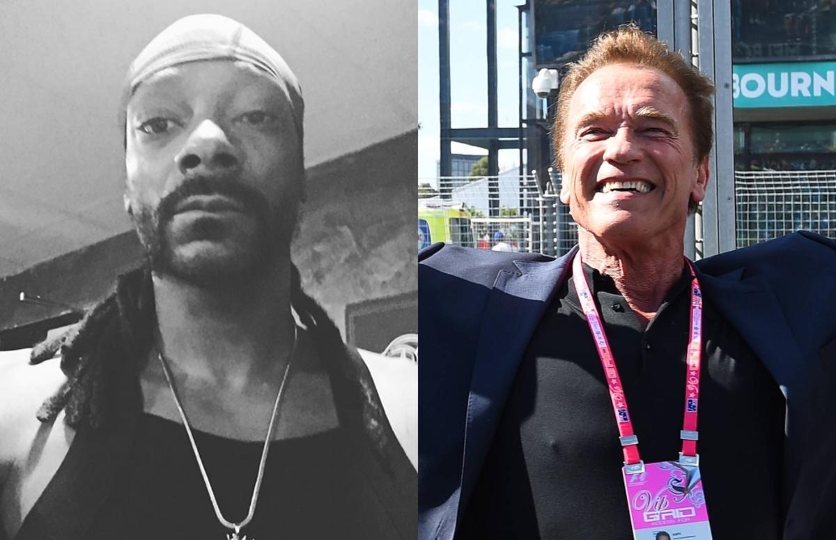 Snoop Dogg обвинил Арнольда Шварценеггера в расизме