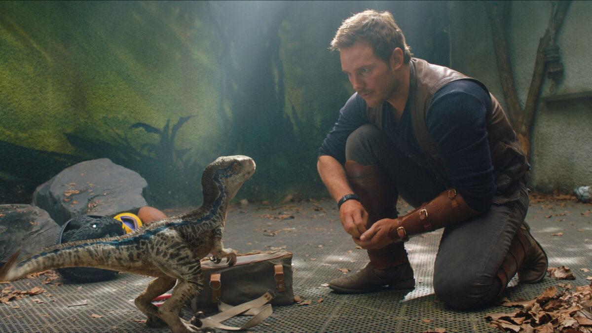 По стопам малыша Йоды: режиссер «Мира Юрского периода 3» умилил снимком маленького динозавра