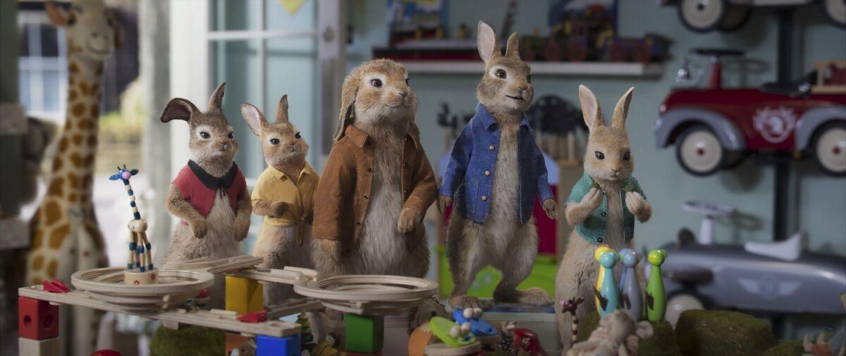 Разыгрываем призы к фильму «Кролик Питер 2»