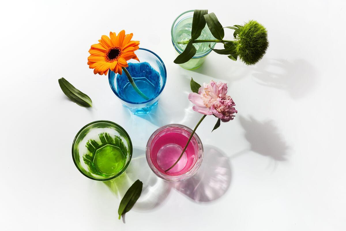 Тест: назовите свой любимый цветок, и мы определим главную черту вашего характера