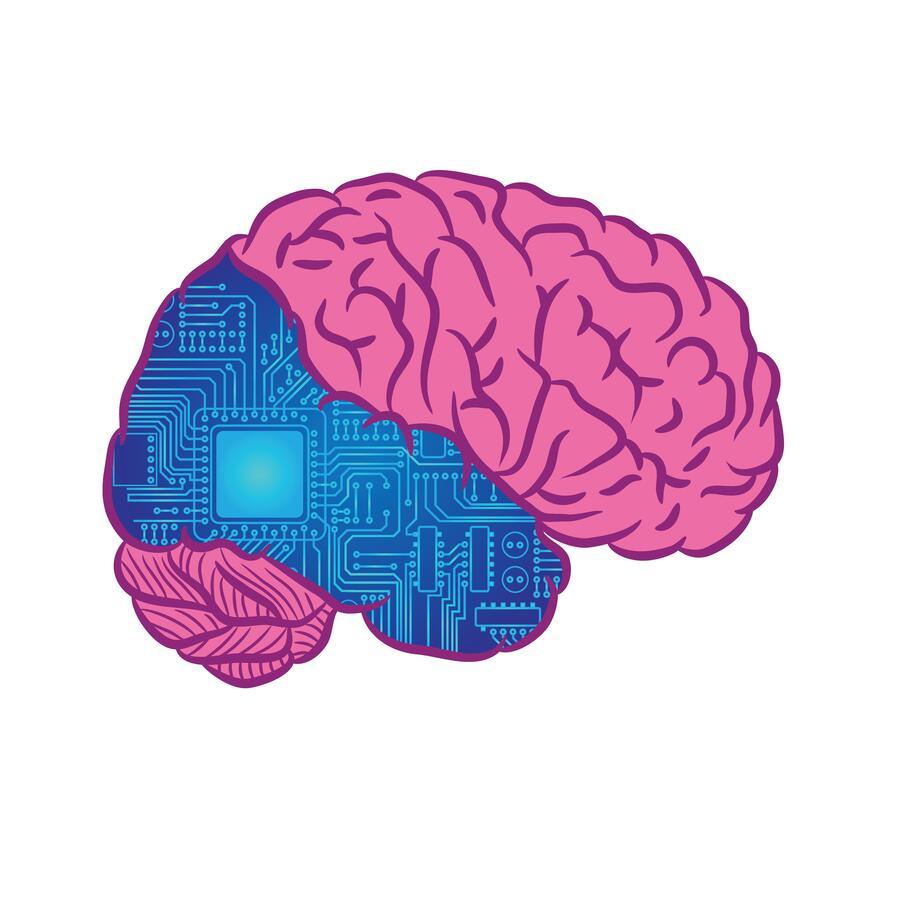 Тест: ответьте на 10 вопросов и узнайте, какое полушарие вашего мозга доминирует