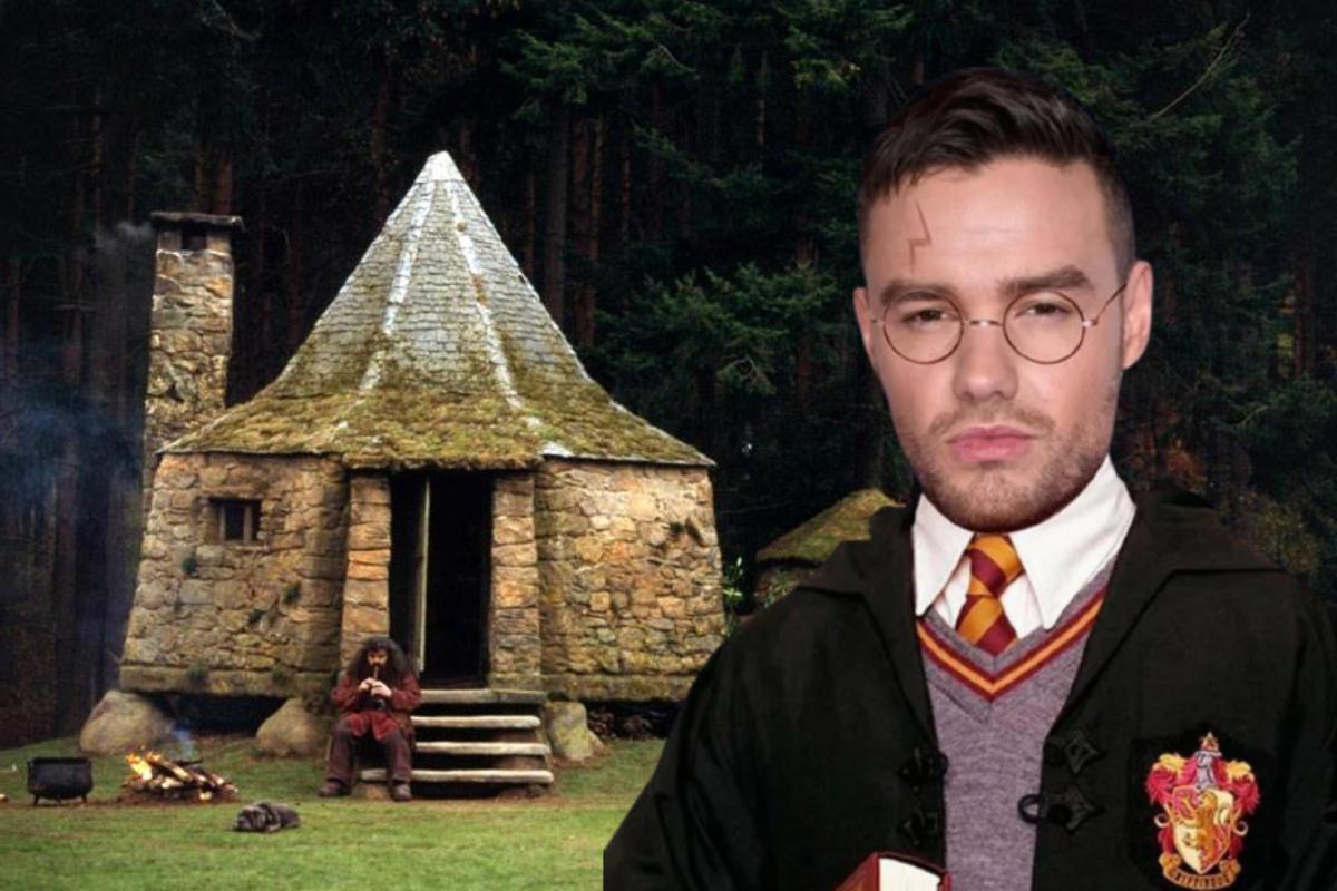 Лиам Пейн построил хижину Хагрида в своем саду и похвастался Тому Фелтону