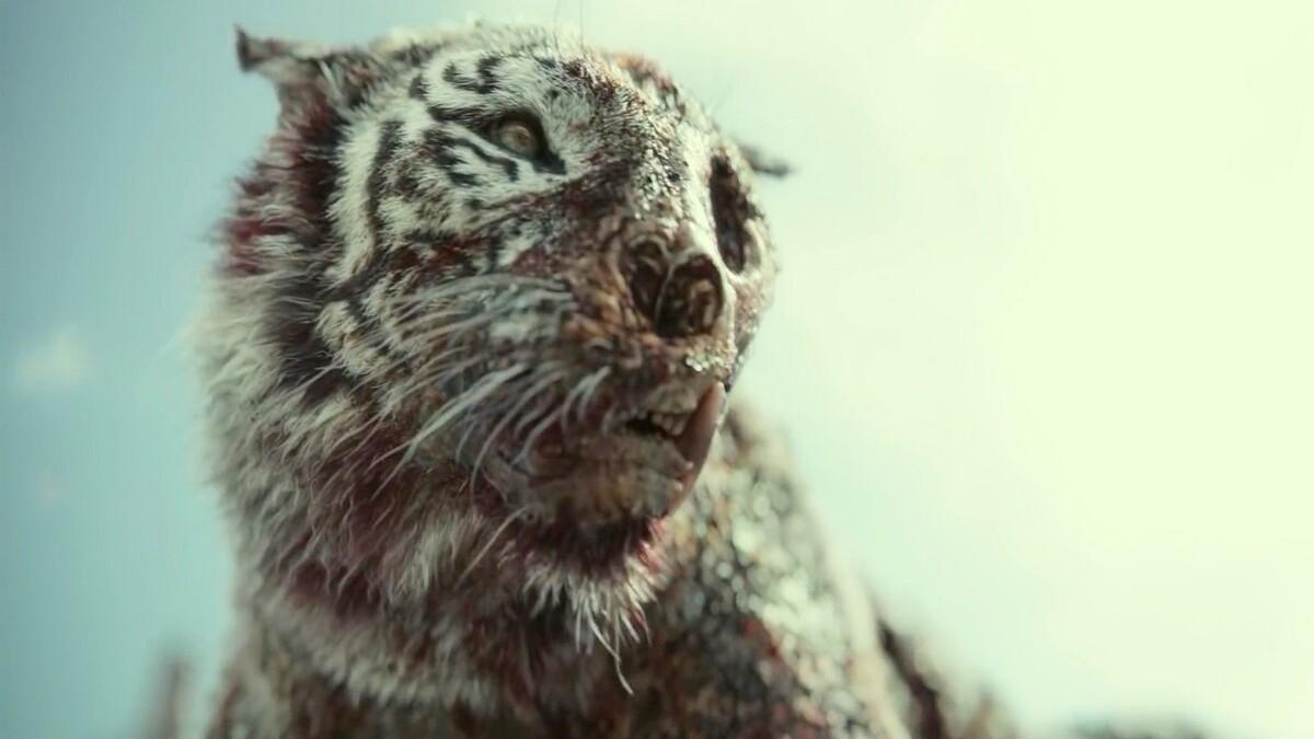 «Не совсем графика»: каскадер рассказал, как создавался зомби-тигр из «Армии мертвецов»