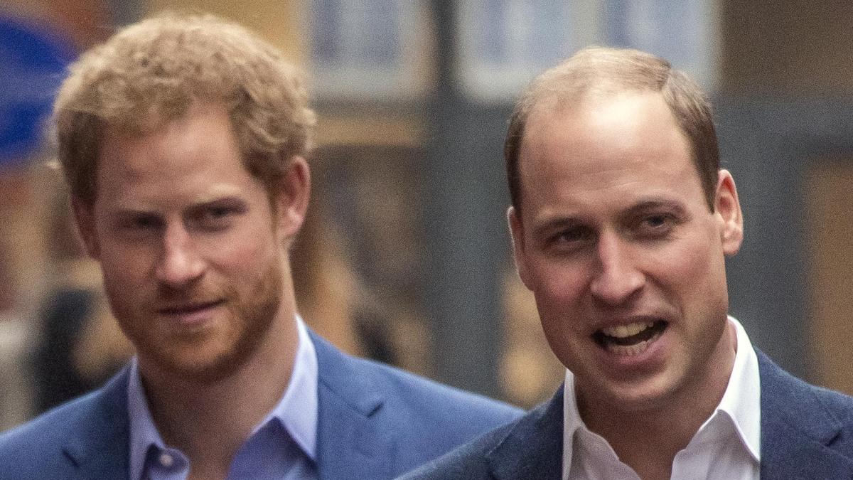 Особые причины: почему принц Уильям избегал Гарри на открытии памятника Диане