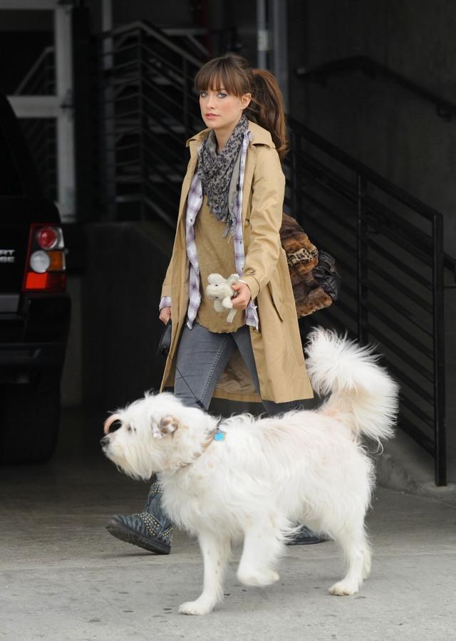 Оливия Уайлд с собакой в Лос-Анджелесе