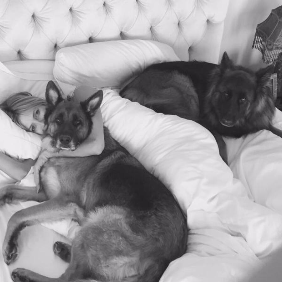 Звезды в социальных сетях: Бритни Спирс покоряет вершины, а Джеймс Франко - женские сердца