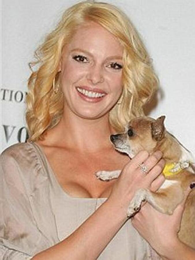 Кэтрин Хайгл отдала животным миллион долларов