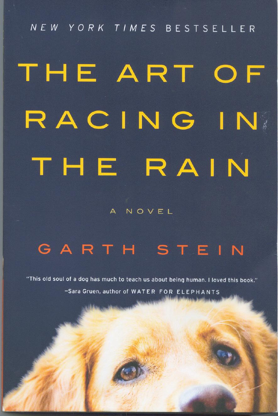 Universal экранизирует «Искусство гонок под дождем»