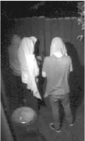 Видео: грабители дома Линдсей Лохан