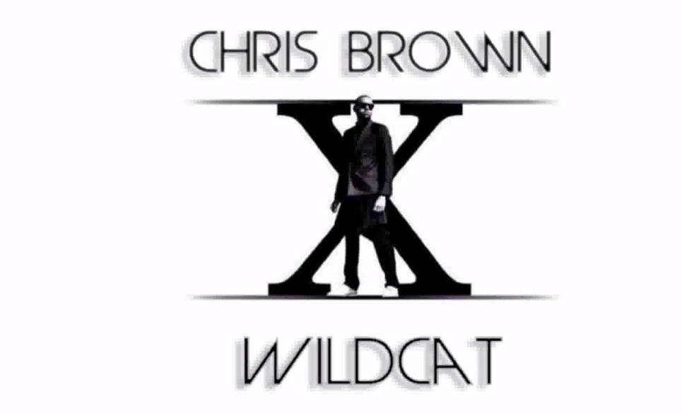 Новая песня Криса Брауна - Wildcat