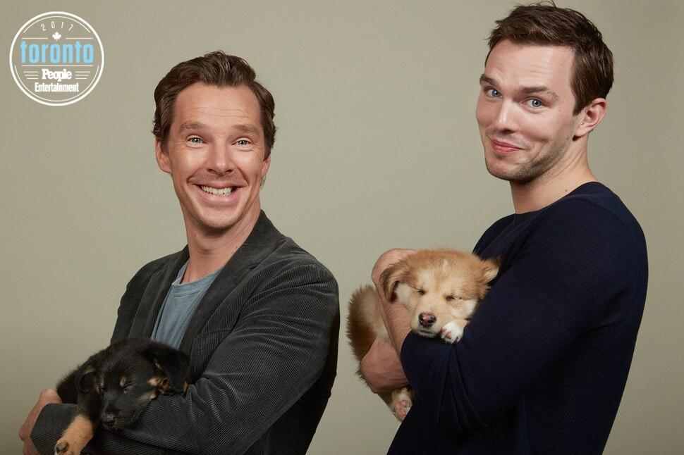 Голливудские звезды в фотосессии с TIFF 2017 в поддержку питомника для бездомных животных