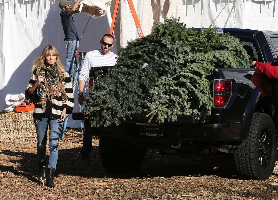 Хайди Клум с семьей выбирает рождественскую елку