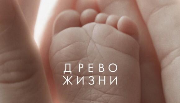 Терренс Малик выпустит документальное продолжение «Древа жизни»