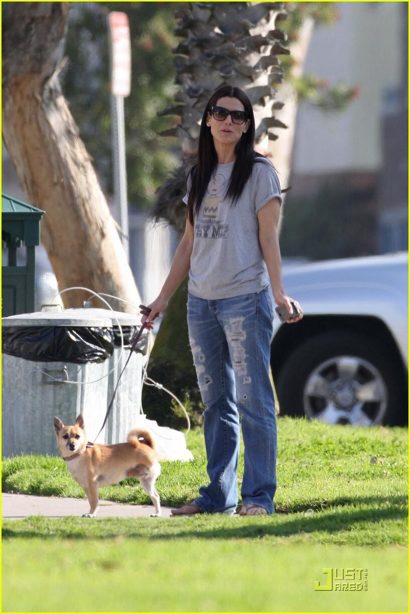 Сандра Буллок и ее собачка-инвалид