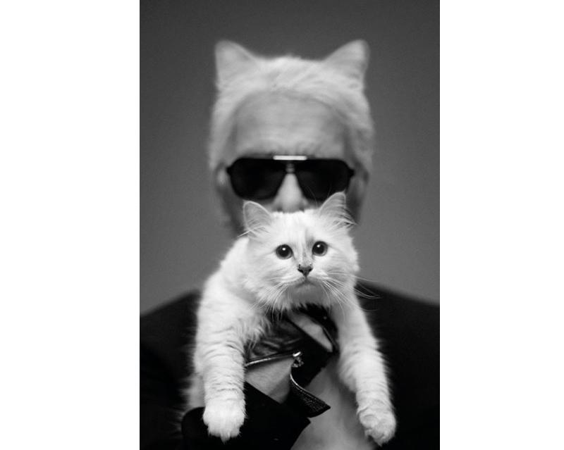 Карл Лагерфельд готов поделиться своей кошкой со всем миром