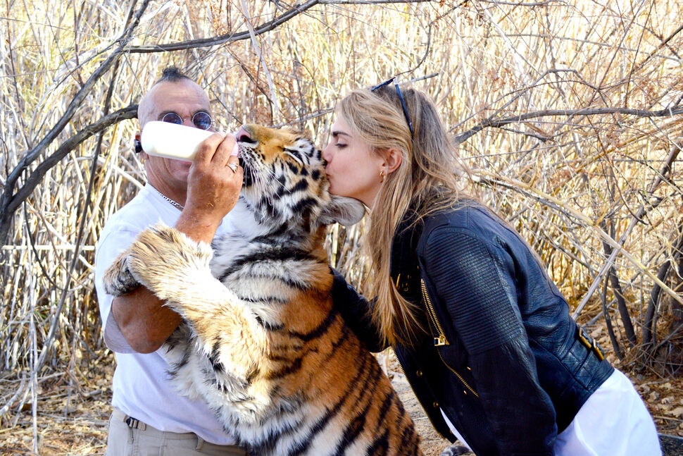 Кара Делевинь и Мишель Родригес посетили зоопарк