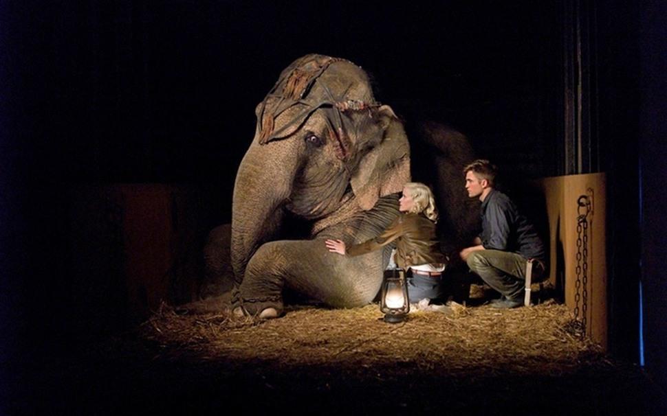 """Видео: отрывки фильма """"Воды слонам!"""" и ролик канала ET со съемочной площадки"""