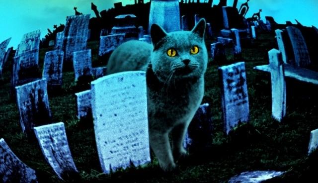 Режиссер «Пираний 3D» экранизирует «Кладбище домашних животных»