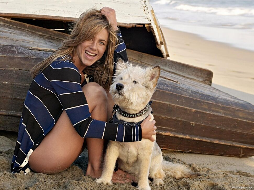 Дженнифер Энистон и Джастин Теру хотят завести собаку