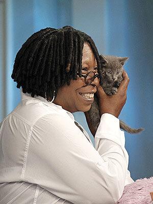Вупи Голдберг спасла котенка