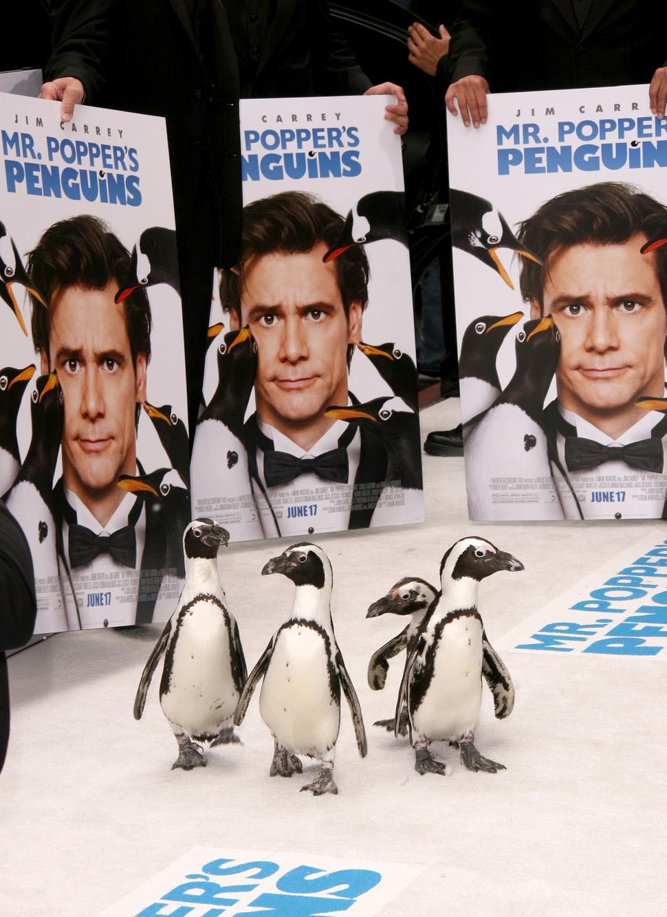 """Премьера фильма """"Пингвины мистера Поппера"""" в Лос-Анджелесе"""
