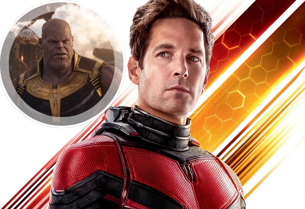 Полу Радду жаль, что нелепый способ фанатов убить Таноса Человеком-муравьем не был реализован