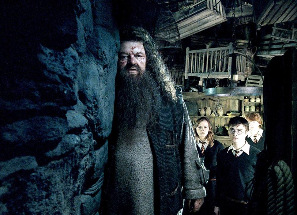 Герой «Гарри Поттера» госпитализирован после перелета