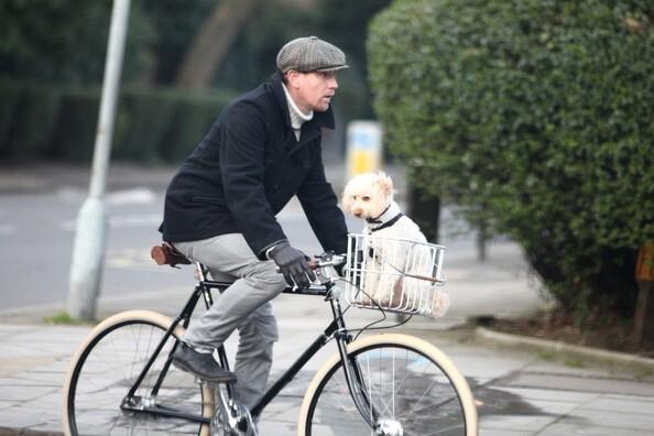 Юэн МакГрегор на прогулке с собакой