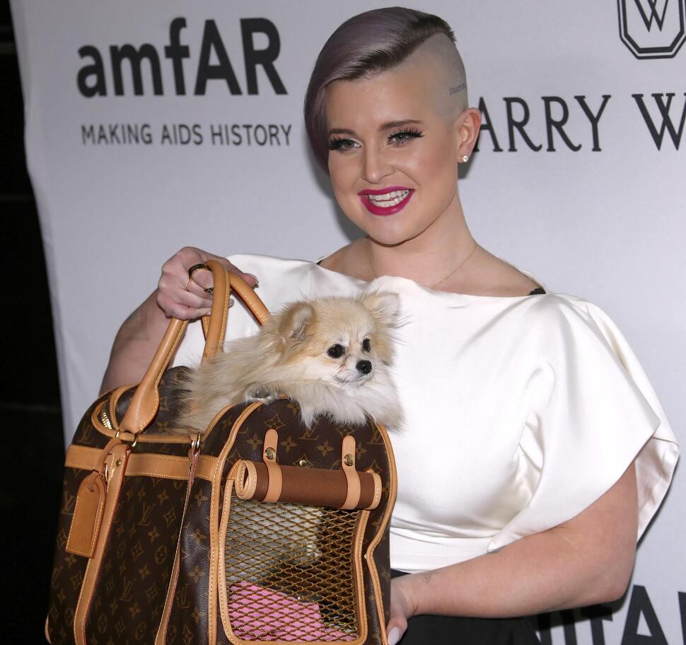 Звезды на благотворительном вечере amfAR Inspiration Gala в Нью-Йорке