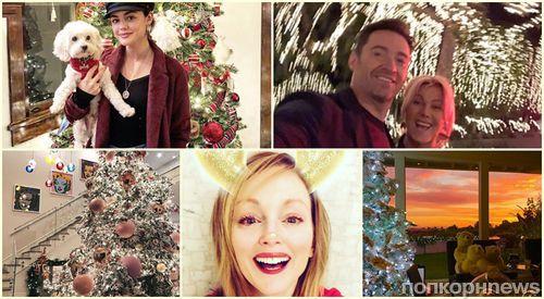 Фото: как знаменитости готовятся к Рождеству