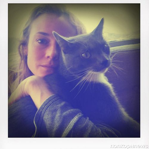 Диана Крюгер боится своего кота