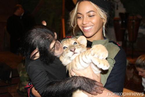 Бейонсе посетила зоопарк