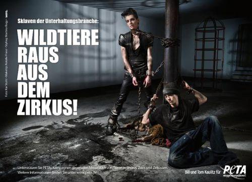 Том и Билл Каулитц в рекламе PETA