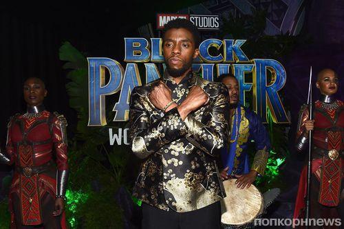 Фанаты DC собираются испортить рейтинг «Черной пантеры» Marvel