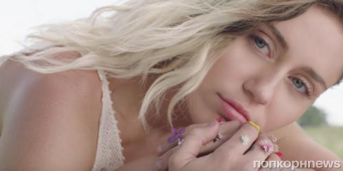 Майли Сайрус выступила против Dolce & Gabbana